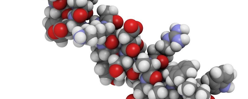 повышенного эстрогена