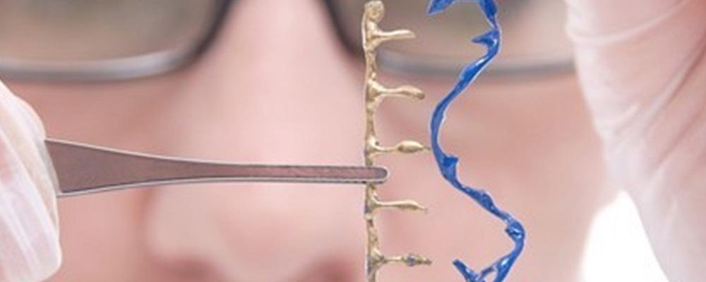 модификация CRISPR