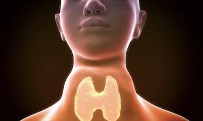 Зоб щитовидной железы - Телеэндокринолог